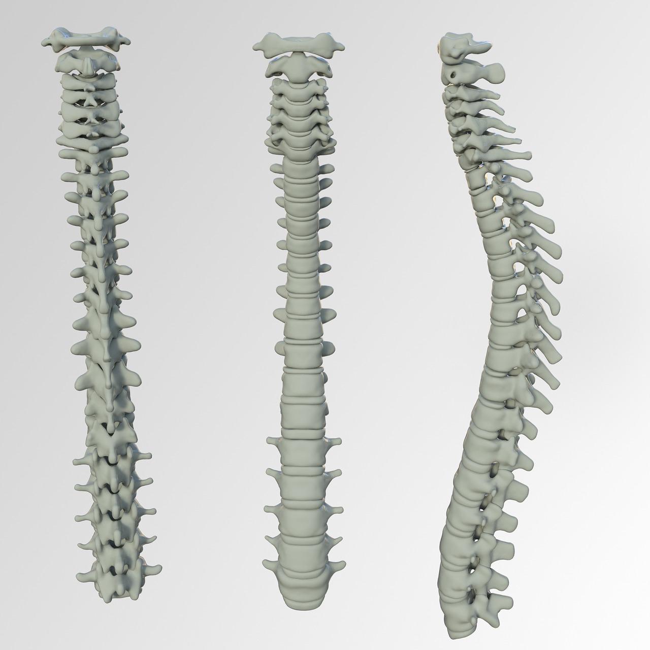 Spinal Screenings  Wilmington, DE